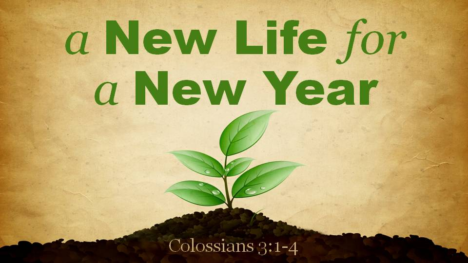 A New Life For A New Year