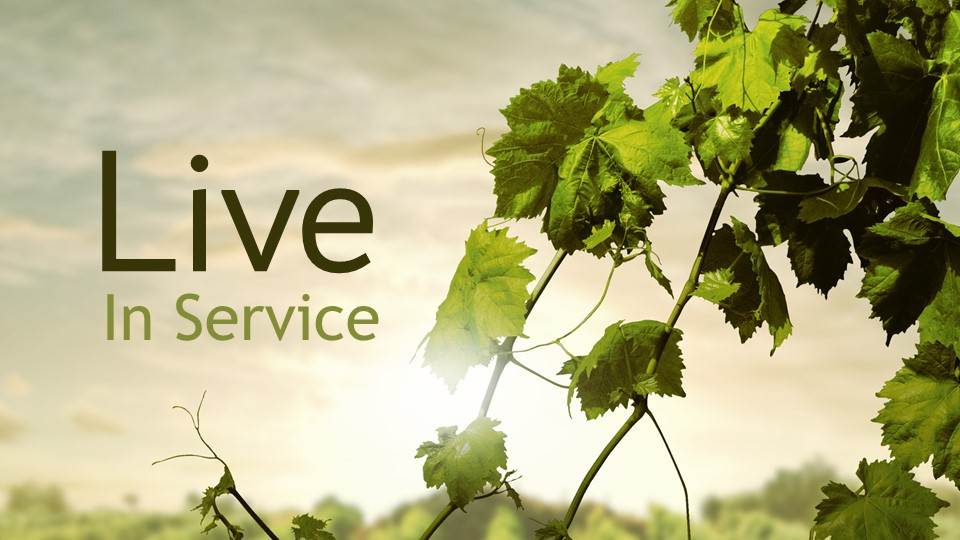 Live In Service