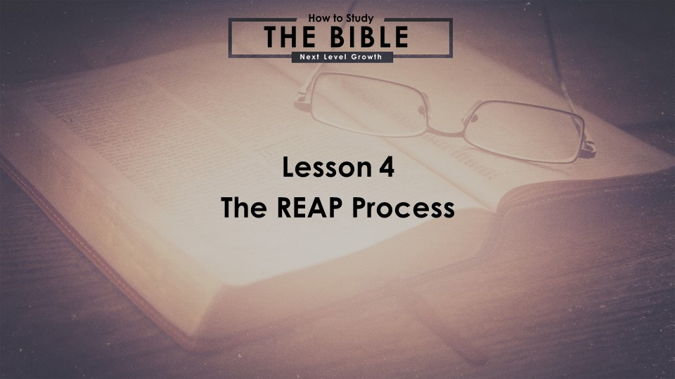 The REAP Process